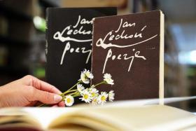 Trzy książki dwie stoją jedna jest otwarta, obok ręka trzymająca bukiet stokrotek.